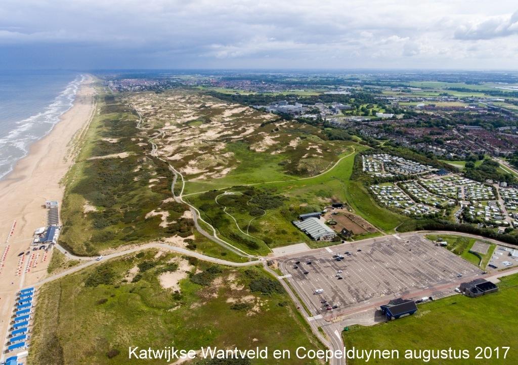 Katwijkse Wantveld en Coepelduynen augustus 2017