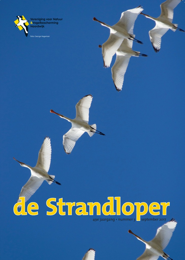 de Strandloper_2017_septemberkl
