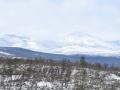 28-sneeuw-landschap-P1010101