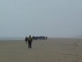 3.Onderweg naar een in de mist gehuld Noordvoort