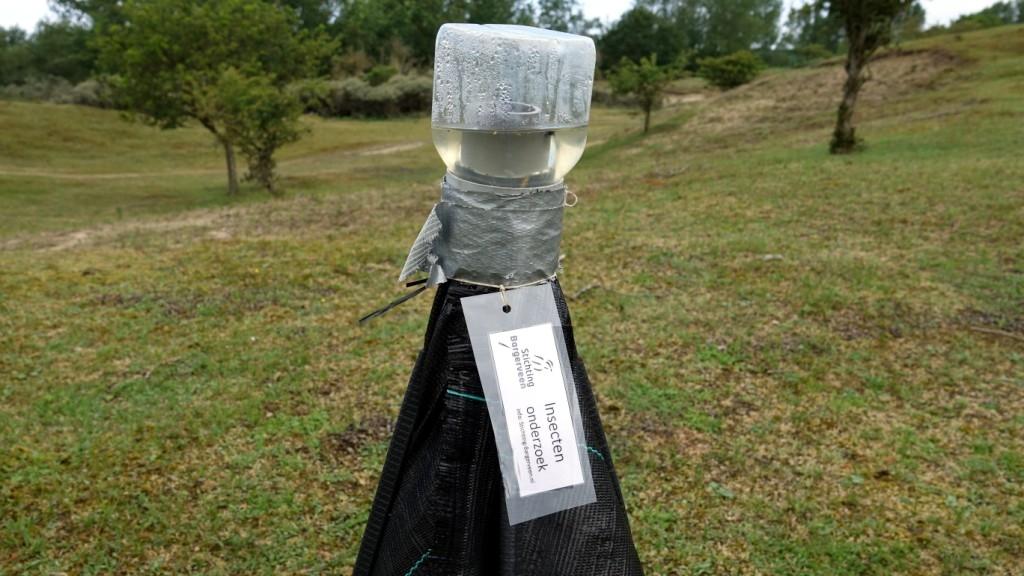 02 DSC01813 Rozenwaterveld, Insecten onderzoek.